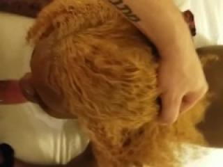 Whole sceneebony hookup POV doggy reverse cowgirl face fuck interracial awesome scene